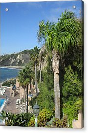 Giant Palm Acrylic Print by Vivien Rhyan