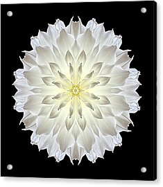 Acrylic Print featuring the photograph Giant White Dahlia Flower Mandala by David J Bookbinder