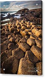Giant's Causeway Bricks Acrylic Print by Inge Johnsson