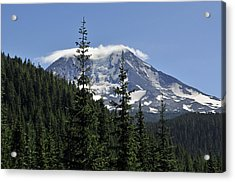 Gifford Pinchot National Forest And Mt. Adams Acrylic Print by Tikvah's Hope