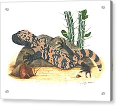 Gila Monster Acrylic Print