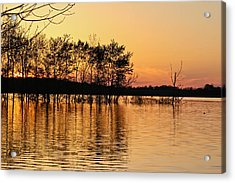Acrylic Print featuring the photograph Gilded Sunset by Julie Andel
