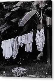 Ginas Clothes Line Acrylic Print by Christy Usilton