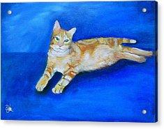 Ginger Acrylic Print by Fineartist Ellen