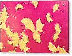 Gink Go Pink Acrylic Print