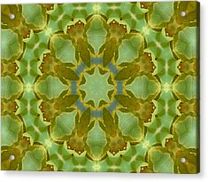 Acrylic Print featuring the photograph Ginkgo Leaf Kaleidoscope Mandala by MM Anderson