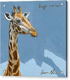 Giraffe Acrylic Print by Aaron Blaise