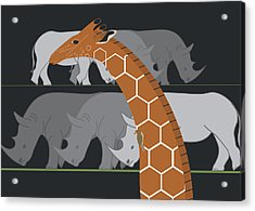 Giraffe And Rhinos Acrylic Print