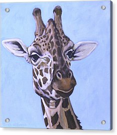 Giraffe Eye To Eye Acrylic Print by Penny Birch-Williams