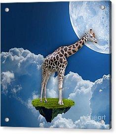 Giraffe Flying High Acrylic Print by Marvin Blaine