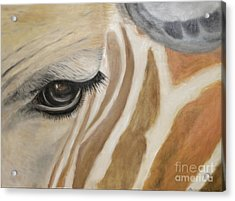 Giraffe In Captivity Acrylic Print