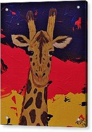 Giraffe In Prime 2 Acrylic Print
