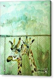 Giraffe World Acrylic Print