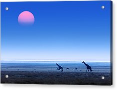 Giraffes On Salt Pans Of Etosha Acrylic Print