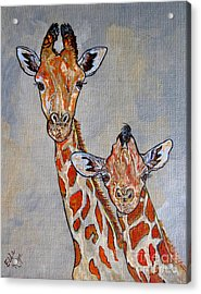 Giraffes - Standing Side By Side Acrylic Print