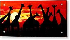 Giraffes Sunset Africa Serengeti Acrylic Print
