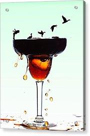 Girl And Geese Liquid Art Acrylic Print by Paul Ge