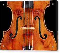Girl In A Violin Acrylic Print by David Blank