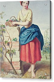 Girl With Basket Of Grapes Acrylic Print by Jules I Bouvier