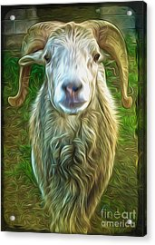 Acrylic Print featuring the painting Git Yer Goat by Gregory Dyer
