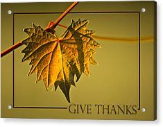 Give Thanks Acrylic Print by Carolyn Marshall