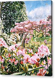 Giverny Rhododendrons Acrylic Print by David Lloyd Glover