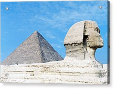 Acrylic Print featuring the photograph Giza by Cassandra Buckley