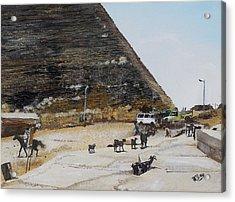 Gizeh-egypt Acrylic Print by Raymond Perez