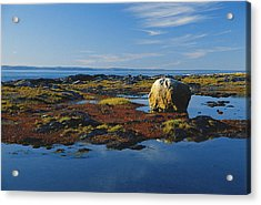 Glacial Erratic, Quebec Acrylic Print