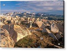 Glacial Erratics, Wyoming Acrylic Print