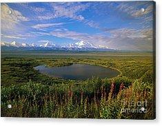 Glacial Kettle Pond And  Denali Acrylic Print