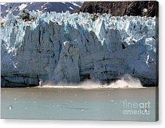 Glacier Bay Alaska Acrylic Print by Sophie Vigneault