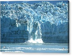 Glacier Calving Acrylic Print by Barbara Stellwagen
