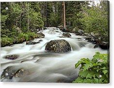Glacier Creek Acrylic Print