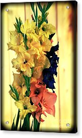 Acrylic Print featuring the photograph Gladiolus  2013 by Marjorie Imbeau