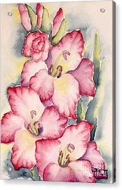 Gladiolus In Pink Acrylic Print