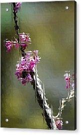 Glass Acrylic Print by Joe Bledsoe