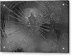 Glass Spider Acrylic Print by Carol Lynch