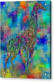 Glassed Giraffe Acrylic Print by Jack Zulli