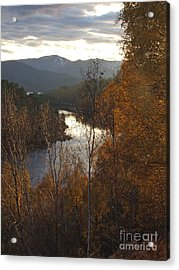 Silver And Gold - Glen Affric Acrylic Print
