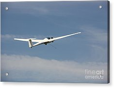 Glider In The Sky Acrylic Print