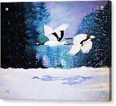 Acrylic Print featuring the painting Gliding Shadows by Al Brown