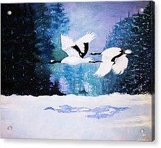 Gliding Shadows Acrylic Print by Al Brown