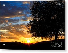 Acrylic Print featuring the photograph Glimmer Of Hope by Everett Houser