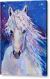 Glitter Horse Acrylic Print by Diane Ursin