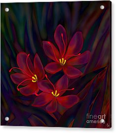 Glitter Acrylic Print