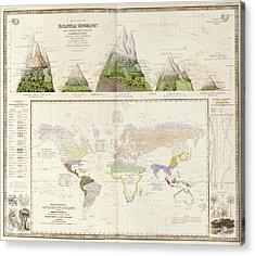 Global Botanical Geography Acrylic Print