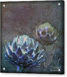 Globe Artichoke Acrylic Print by Liz  Alderdice