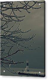 Gloomy Ice Acrylic Print by Dawdy Imagery