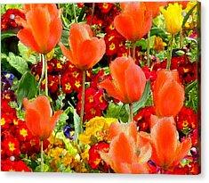 Glorious Garden Acrylic Print by Bruce Nutting